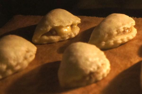 porcini mushroom pasties - gushing