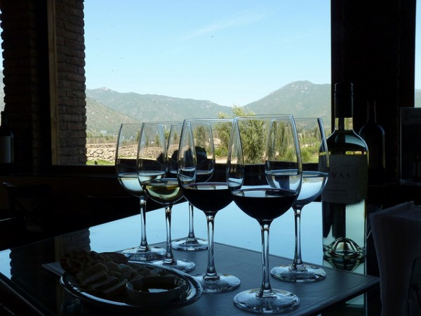 The wine and the view @ Emiliana